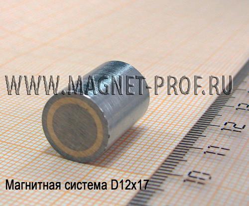 Магнитная система D12x17